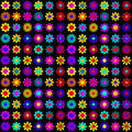 Vibrant Colorful Flowers On Black Background Stock Image - 27915131