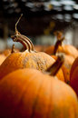 Pumpkins Stock Image - 27931161