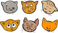 Cartoon Funny Cats Heads Set Royalty Free Stock Images - 27952109