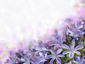 Violet Bluebells On Blurred Background Royalty Free Stock Photos - 27967818