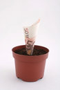 Money Note In The Pot Stock Image - 27972351
