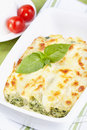 Cannelloni Stock Image - 27976571