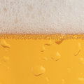 Beer With Froth Stock Images - 27986034