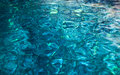 Water Reflections Royalty Free Stock Photos - 27999548