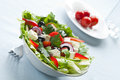 Greek Salad Royalty Free Stock Photography - 28034377