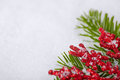 Christmas White Seasonal Background Royalty Free Stock Photos - 28049948