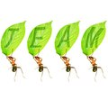 Ant Team Royalty Free Stock Photography - 28069747