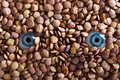 Eyes And Lentils Stock Photography - 2815172