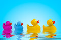 Yellow Rubber Ducks In Water. Royalty Free Stock Photography - 28116907