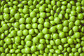 Green Candies Royalty Free Stock Images - 28119389