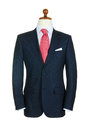 Male Clothinh Suit On Stand Royalty Free Stock Photography - 28135117