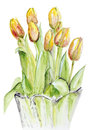 Spring Tulips In A Crystal Vase Stock Images - 28152984