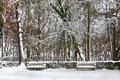 Winter Park. Bench And Spruce Trees Covered With Snow. Royalty Free Stock Image - 28203476
