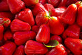 Rose Apples Royalty Free Stock Image - 28237726