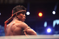 THAI FIGHT 2012, Final Round Royalty Free Stock Photography - 28253507