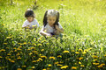 Two Little Girls Playing In The Meadow With Dandelions Stock Photos - 28273713