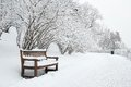 Park Bench And Trees In Winter Stock Photography - 28286472