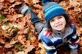 Todler And Leafs Royalty Free Stock Images - 28294599