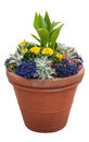 Potted Plants Royalty Free Stock Photos - 28302008