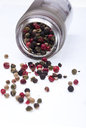 Pepper Royalty Free Stock Image - 28352116