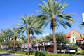 Miracle Mile In Coral Gables, Miami Stock Image - 28383041