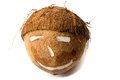 Coconut Royalty Free Stock Photography - 28391777