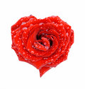 Red Rose In The Form Of Heart Royalty Free Stock Photo - 2841135