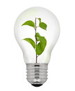 Green Energy Light Bulb Stock Photos - 28415023