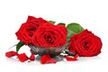 Red Roses And Petals Stock Photos - 28441813