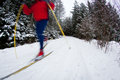 Young Man Cross-country Skiing On A Snowy Forest Trail Royalty Free Stock Photos - 28442278