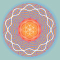 Flower Of Life Seed Spring Blue Mandala Royalty Free Stock Photo - 28462245