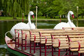 Boston Swan Boats Stock Photos - 28466403