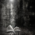 Open Book  Royalty Free Stock Photo - 28476305