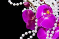 Flowers Of Pink  Orchid And Beads From White Pearls Royalty Free Stock Images - 28478749