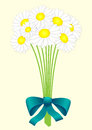 Bouquet Of Daisies Stock Photos - 28518643