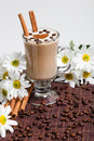 Cup Of Cappuccino With �innamon And White Flowers Royalty Free Stock Photography - 28543007