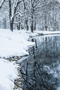 Not Frozen Pond In Winter Stock Images - 28551414