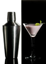 Black And White Cocktail Royalty Free Stock Photo - 28555575