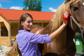 Young Woman In The Stable With Horse Stock Photography - 28557782
