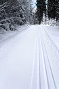 Fresh Track For Cross-country Skiing Stock Images - 28569304