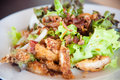 Bacon Salad With Deep Fried Chicken Stock Photos - 28586273
