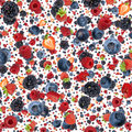 Mixed Berries Background (on White) Stock Images - 28616574