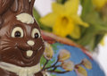 Easter Bunny Stock Images - 28655554