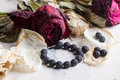 Black Beads With Dry Roses Stock Images - 28660284