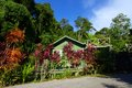 Eco Tourism Homestay - Cottage Beside Jungle Stock Images - 28704804