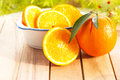 Citrus Fruit Stock Images - 28708634