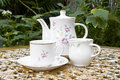 Tea Time In The Garden With Desert Rose Flower Royalty Free Stock Photo - 28748825