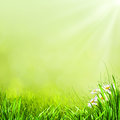Summer Natural Backgrounds Stock Photo - 28762180