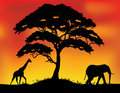 Safari Silhouette Background Royalty Free Stock Photography - 28772747