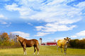 American Countryside Red Barn Stock Photography - 28777682